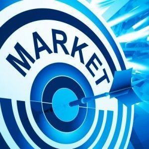 Nicho de mercado para el blog