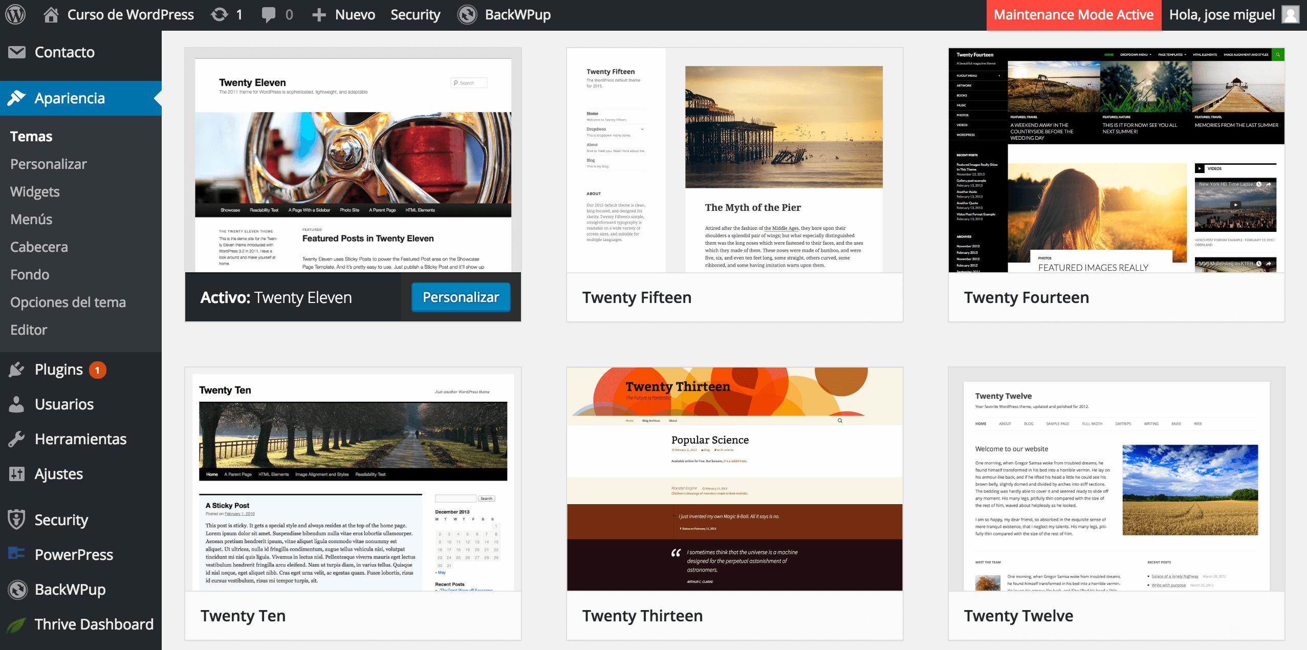 Instalación de un tema en WordPress